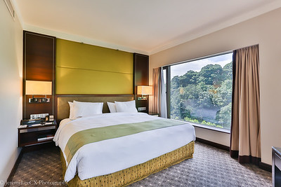 Holiday Inn Orchard City Centre (Junior Suite)
