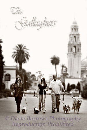 Gallagher Family Portraits
