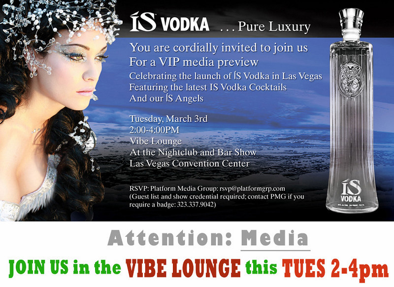 02-29-vibe-lounge-party.jpg