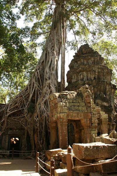 2009-12-21-Cambodia 2