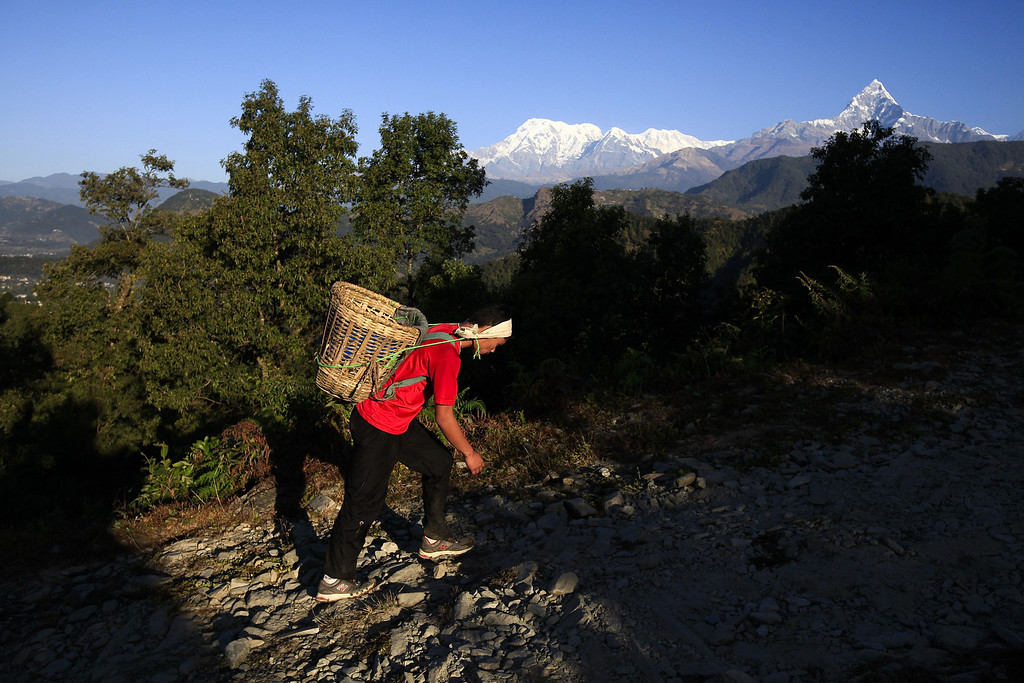 . A Nepalese youth carries a basket locally known as \'Doko\' containing 25 kg of stones as part of a physical training session, organized by a private institute in Phokhara who prepares them for the British Gurkha soldier recruitment selection, at Malam Mountain in Kaski district, Nepal, 18 November 2012. The British Gurkha soldier recruitment selection process started on 23 November and runs untill the end of December 2012 at British Gurkha camp situated in Pokhara City, Nepal. Around 125 youths will be selected from more than three thousands participants. Those selected will join the British Army, a selection which carries much prestige and admiration throughout Nepalese society.  EPA/NARENDRA SHRESTHA