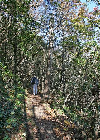 10/29/08 - Len Foote Inn to Springer Mountain
