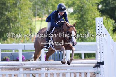 150-151-153-154. Chasseur Moyen Poney - Medium Pony Hunter