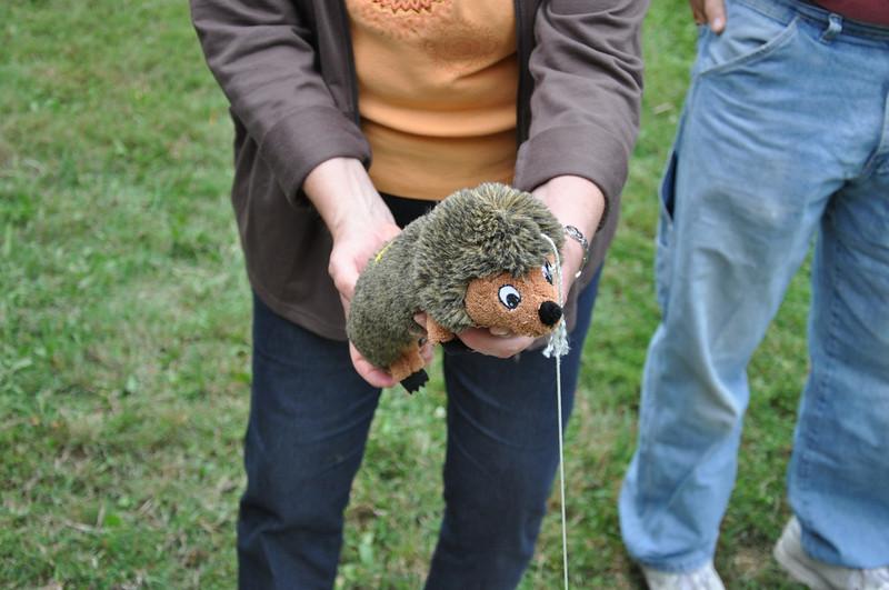 Hedgehog Kavanuagh block party 2009.jpg