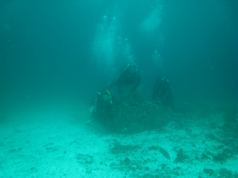 Diving in the Galapagos (252 of 392)