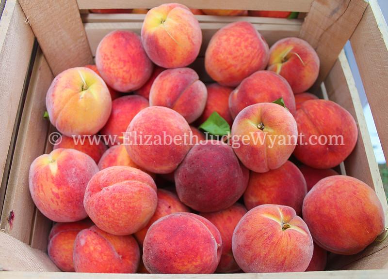 Peaches Easton Farmers' Market Zucchini 500, 2014