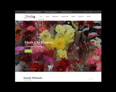 Websites - Kelly Advertising