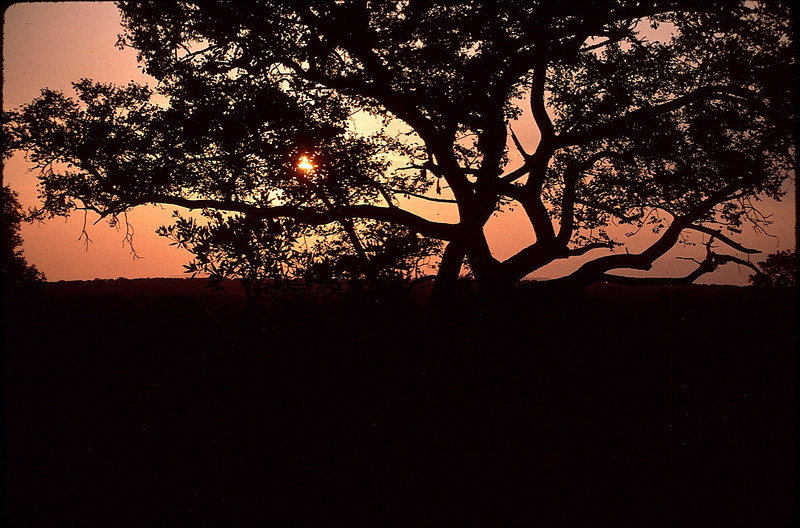 SAfricaZim1_063.jpg