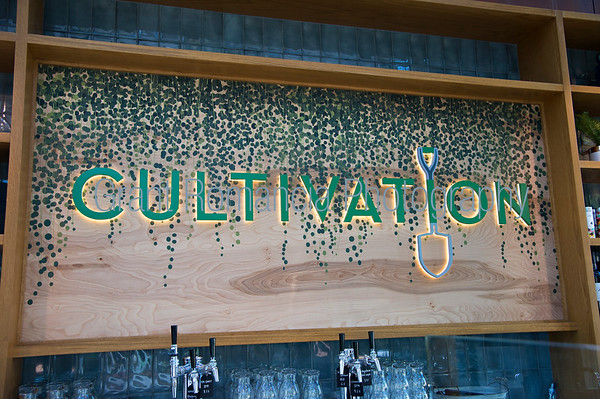 Cultivation Kitchen