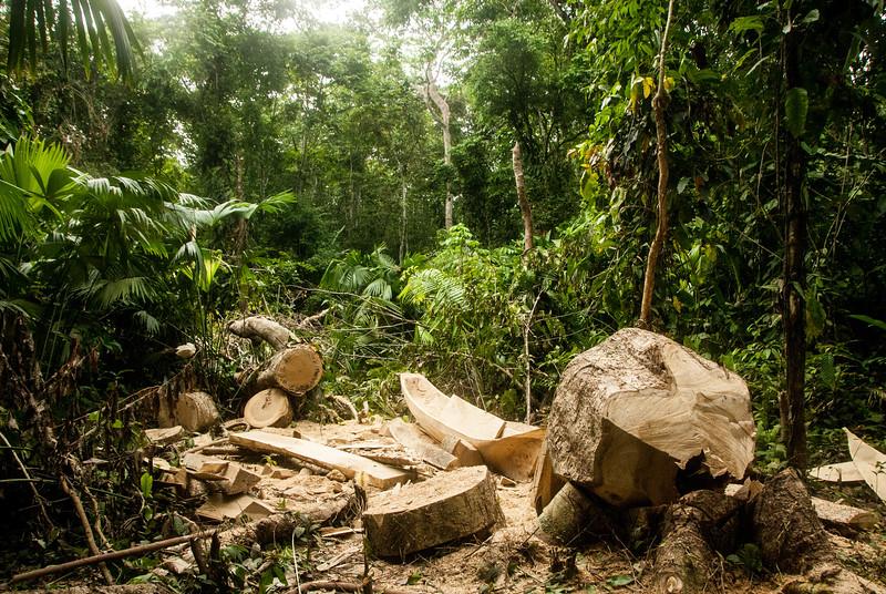 2012-07 Panama and Kuna Yala-161.jpg
