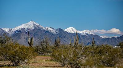 Sonoran Desert Snow 2019