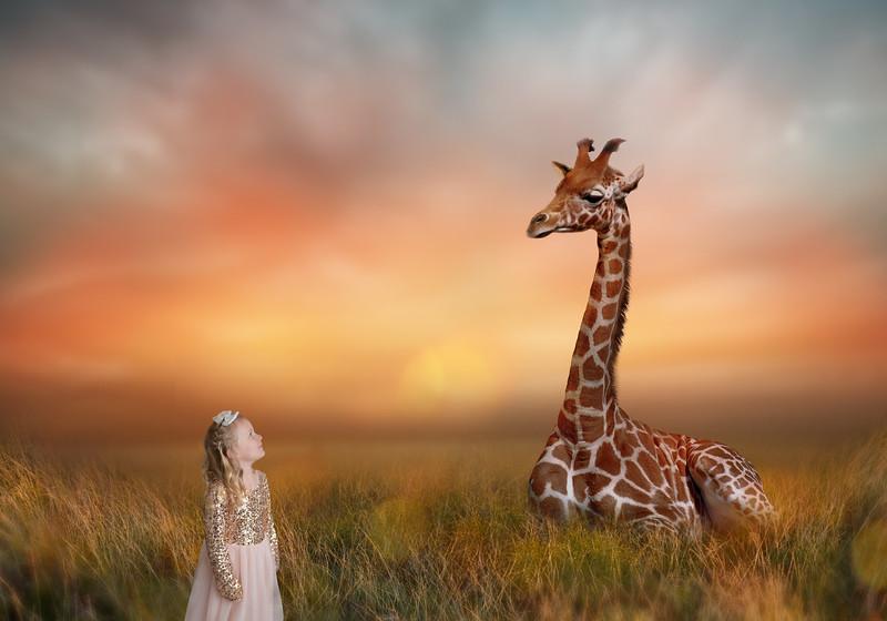 Gia_GiraffeDreamyFieldDigitalBackdrop.jpg