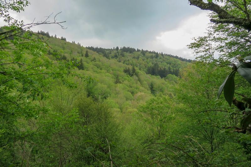Mountains-to-Sea Trail -- 5,420'