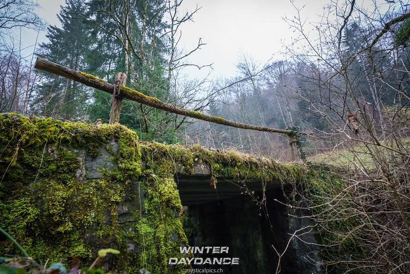 Winterdaydance2018_115.jpg