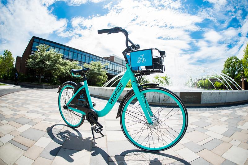 DSC_6682 bike May 06, 2019.jpg