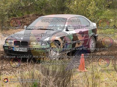 7-71 Spencer's Camo BMW