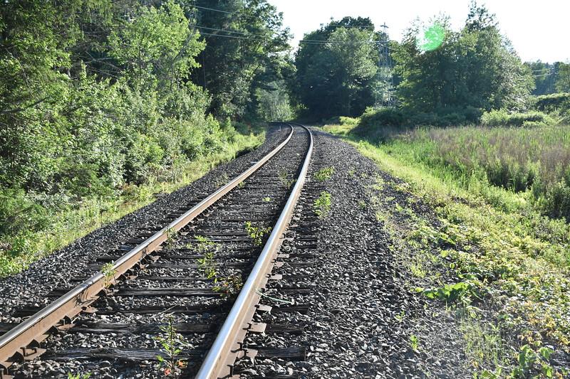 2019_06_26 CS Trail (83).JPG
