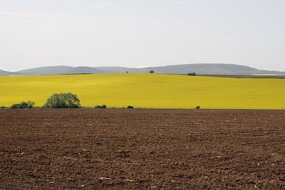 2014-04-27 Nemce Jankove Vinice