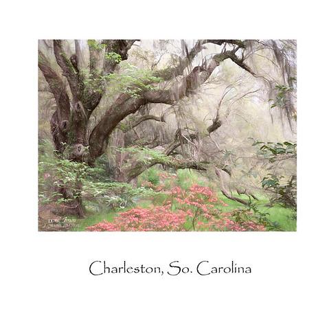 Charleston , So. Carolina