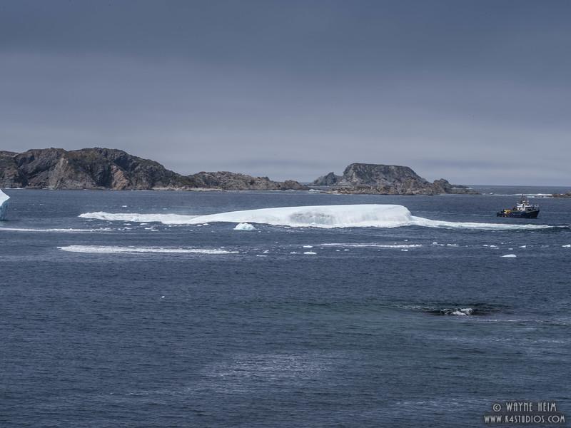 Iceberg  68f  Photography by Wayne Heim