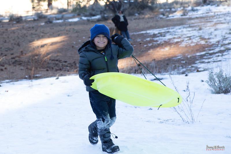 The Snow Sledder