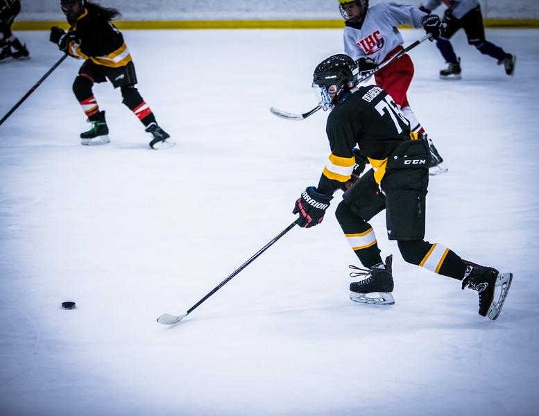 Bruins2-491.jpg