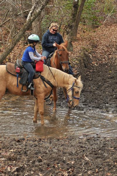 horse-riding-0165.jpg