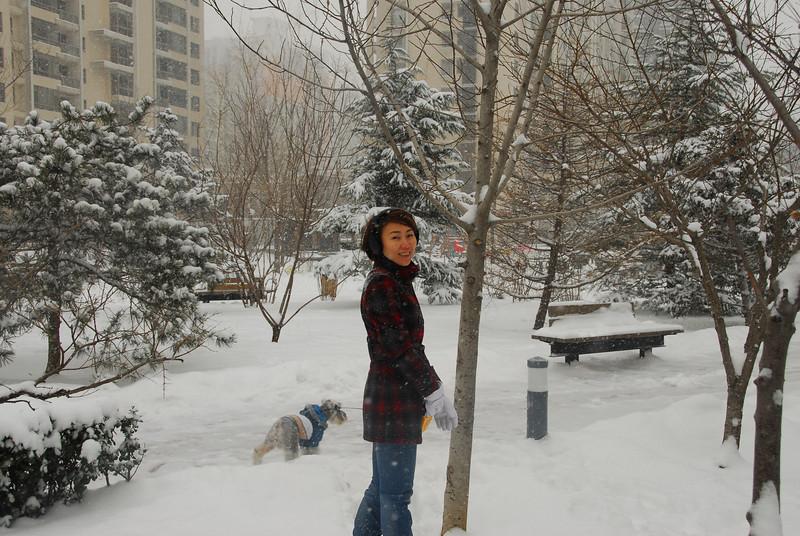 [20100103] 1st 2010 Snow in Beijing (33).JPG