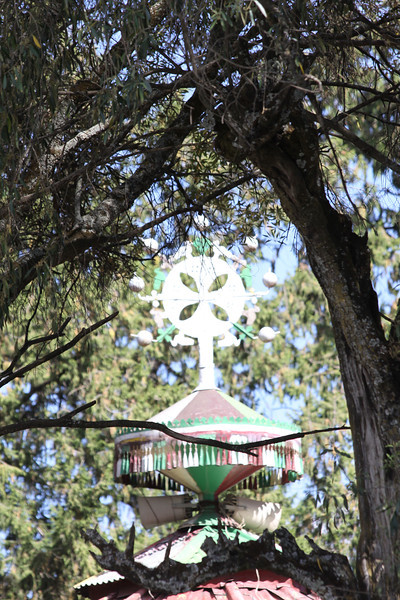 top of Orthodox church through trees