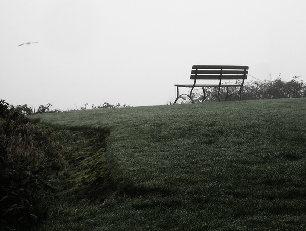 0115 lonely.JPG