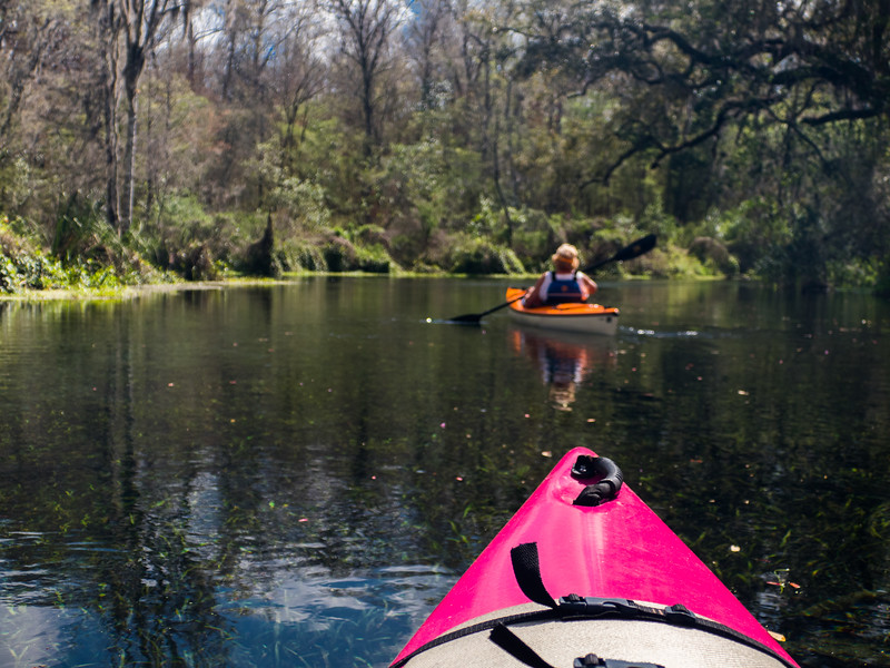 02-23-2019 Ichetucknee River kayak (72 of 78).jpg