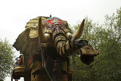Sultan's Elephant