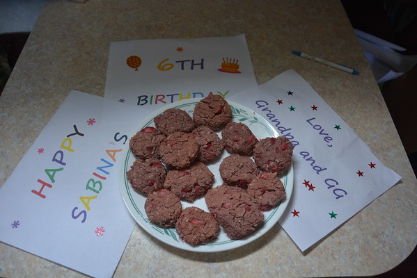 2015-04-14 Bina Birthday Cookies