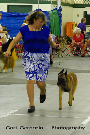 Virginia Kennel Club - June 2009