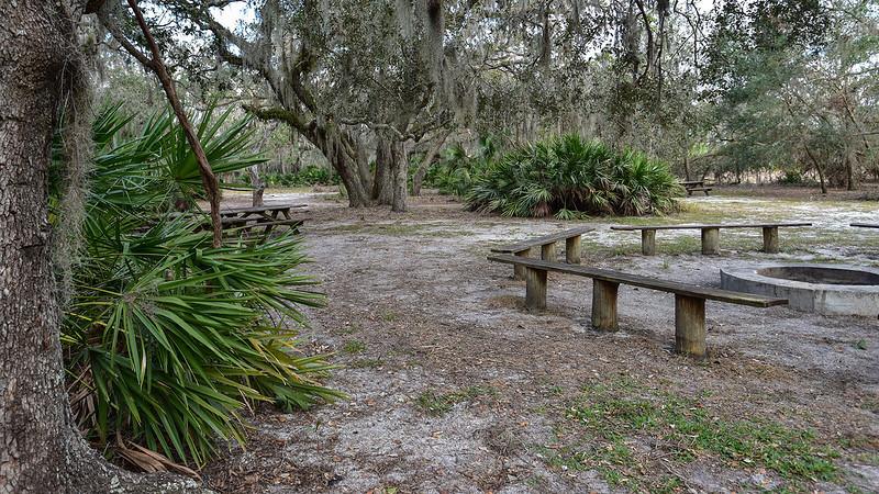 Picnic tables under oaks