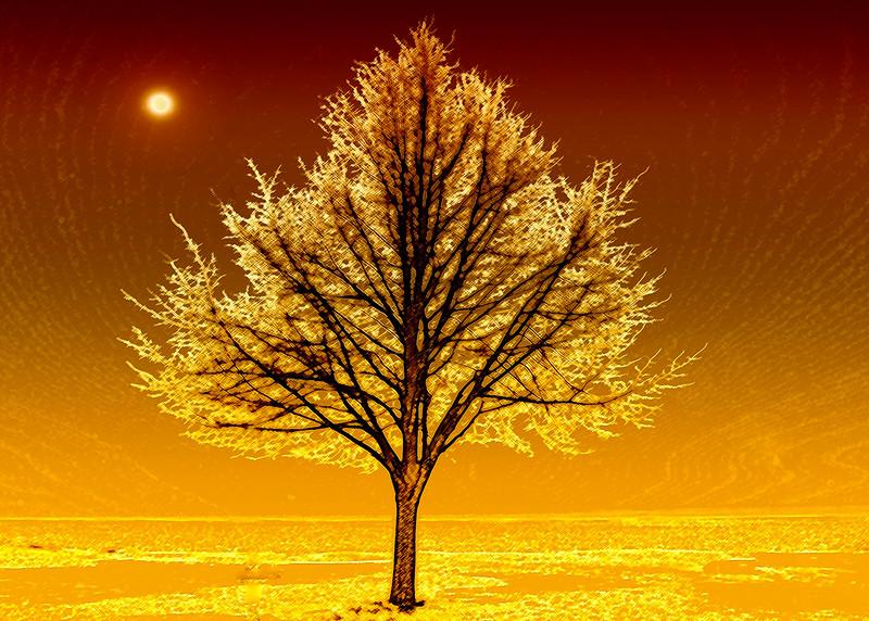 01 Virtual sunrise   Nature  Roper  .jpg