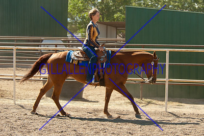 Western and Loose Horse Obstacle 110925