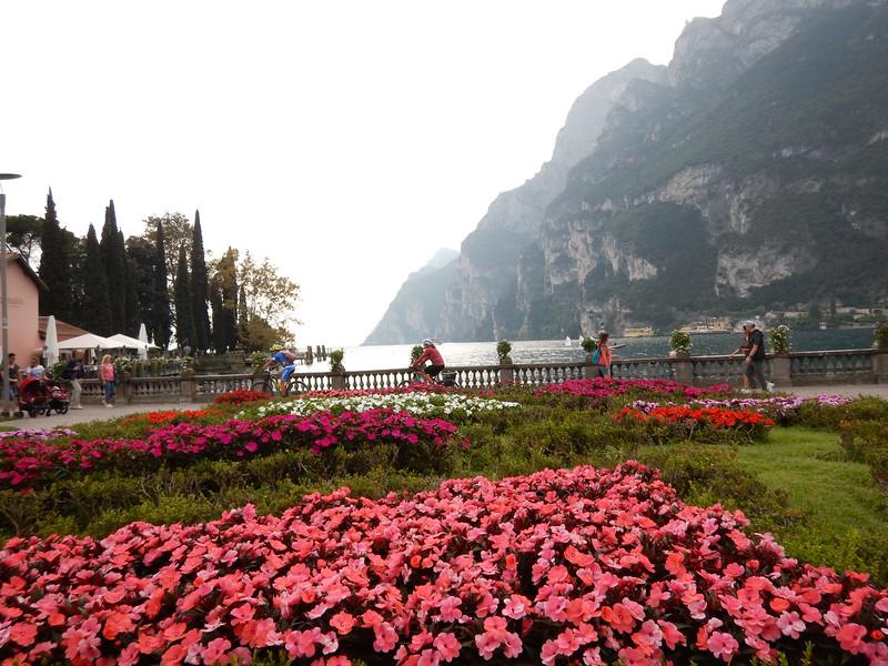 Lake-Garda-Flowers.JPG