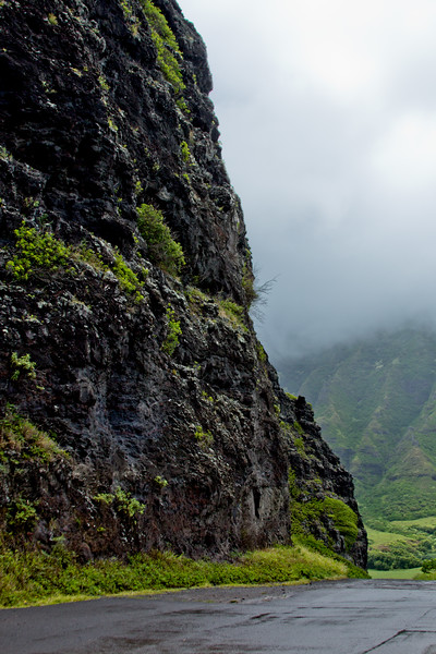 Journey into Oahu Photograph 67