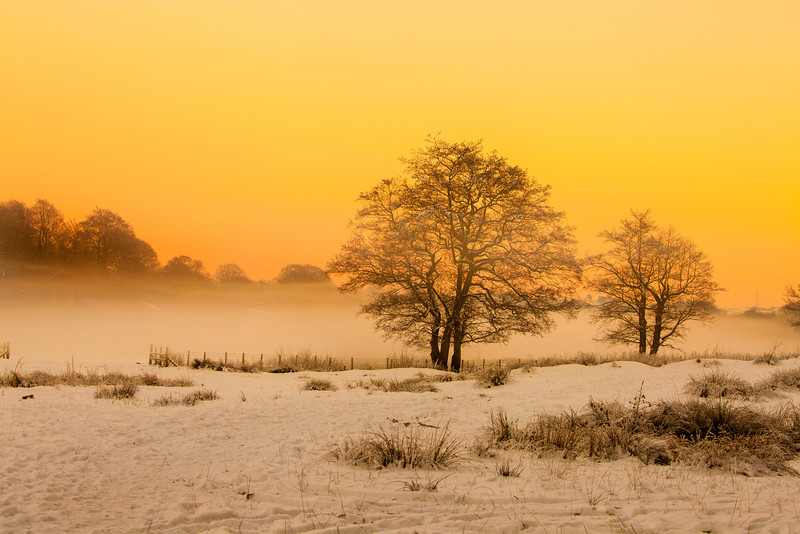 Early morning mist in the snow. This photo was taken at Hoghton Bottoms, near Owlet Holes Wood by the River Darwen.