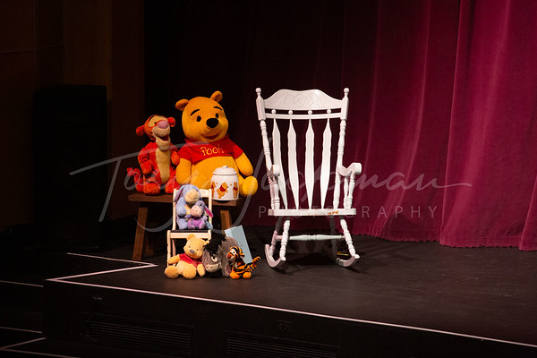 Winnie the Pooh 2019