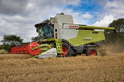 2020-07 Harvest