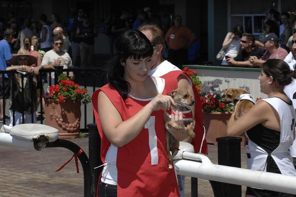 Derby Dog Dash 8-12-12