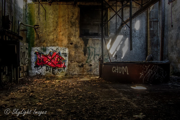 Abandoned Paper Mill near Downingtown PA.