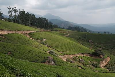 Kerala and Kanyakumari