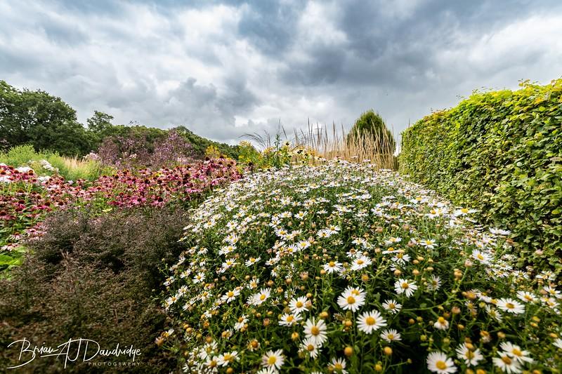 500_Sussex Prairie Gardens-3738.jpg