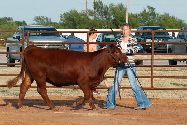 Kiowa County Cattle Jackpot