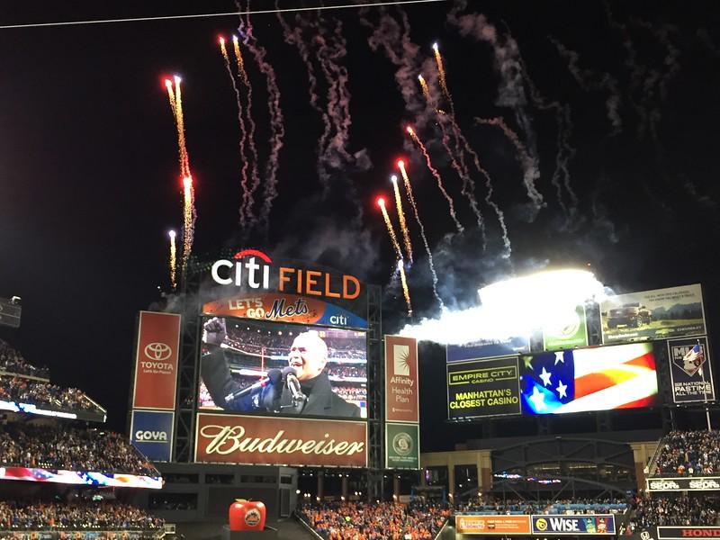Mets vs Cubs 11.JPG