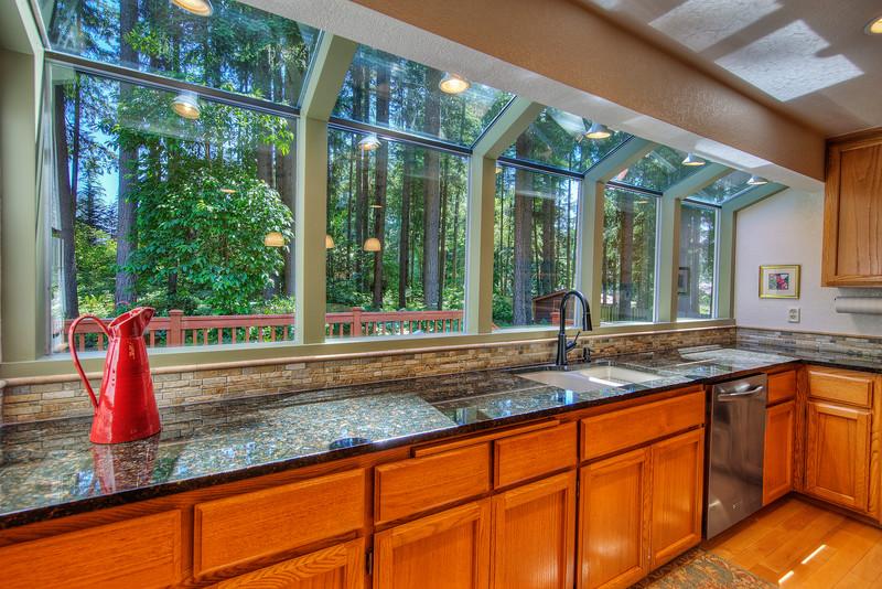 Kitchen windows.jpg