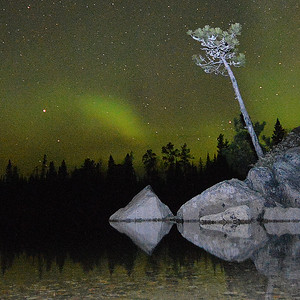Minnesota Auroras